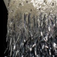Vestido de noche a la rodilla sin mangas con la parte superior de cuentas en color crema y plata, la parte central de cuentas en color negro y la falda de plumas en color negro.