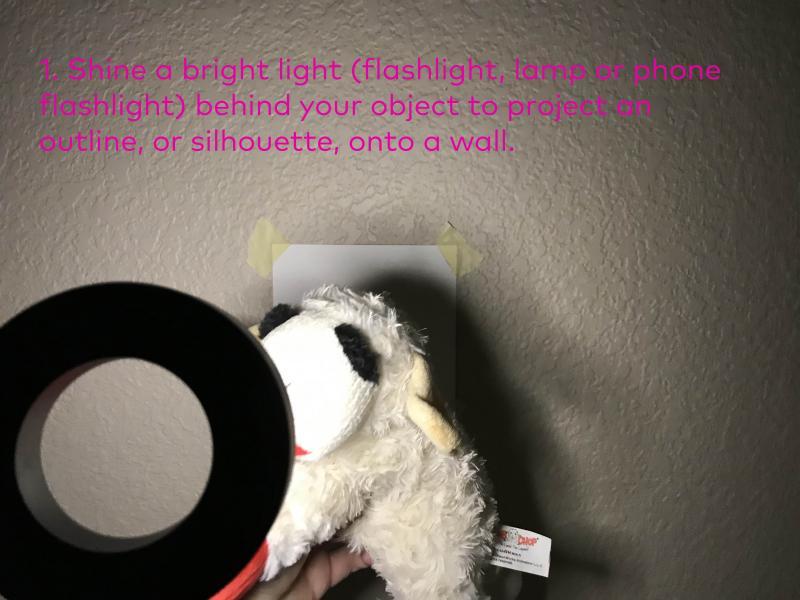 Step 1: Shine a bright light