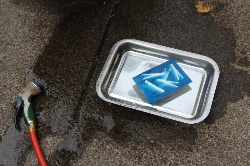 A cyanotype print in a tray next to a water hose