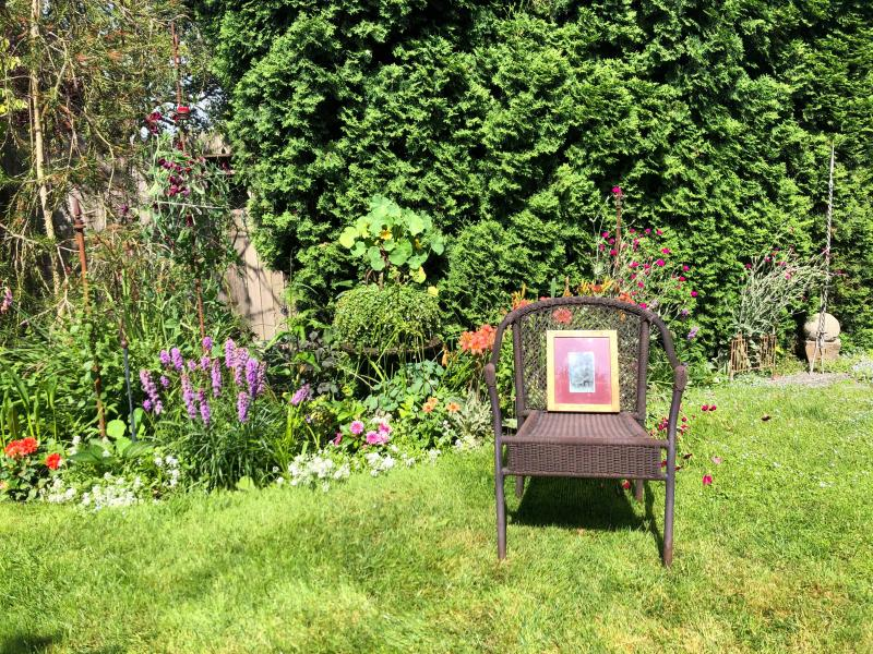 A picture on a chair in a backyard garden